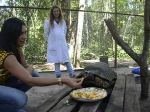 Biológa Patrícia Fonseca diz que o jabuti é querido  por todos os funcionários do zoobotânico (Foto: Dyepeson Martins/G1)