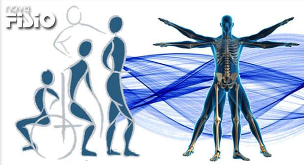 Evolução Científica Da Fisioterapia Em 40 Anos De